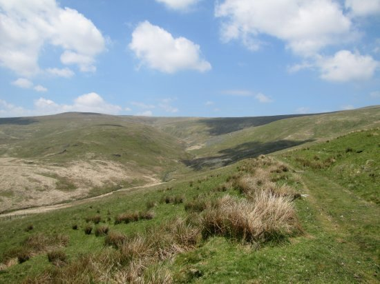 view over the source of the Wye
