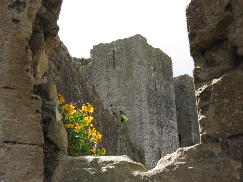 castle walls and flowers