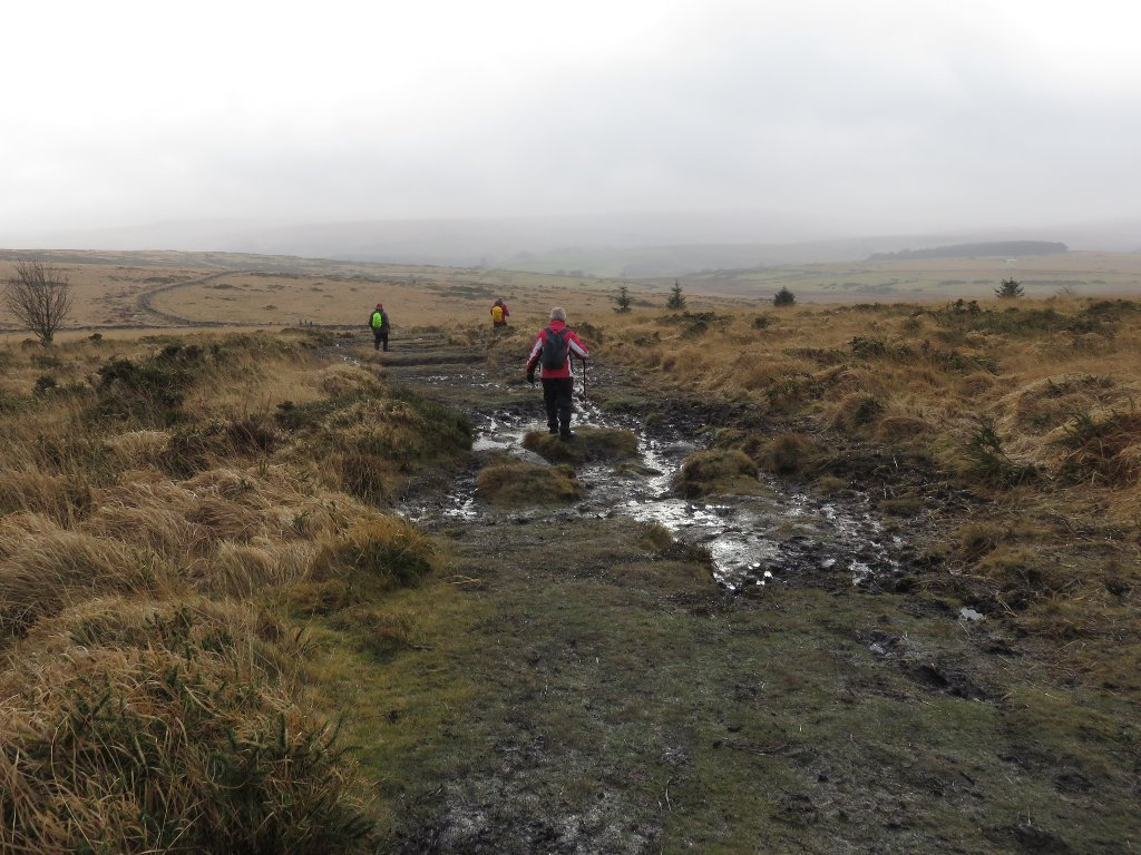 mud on Bellever Tor