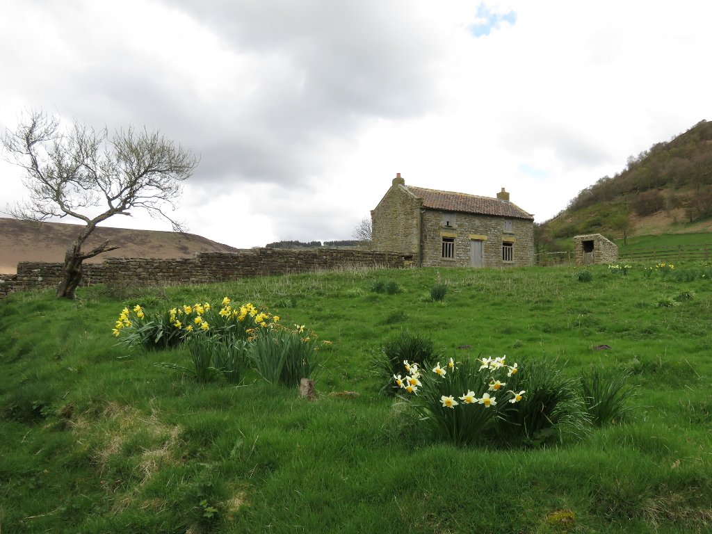 disused farmhouse