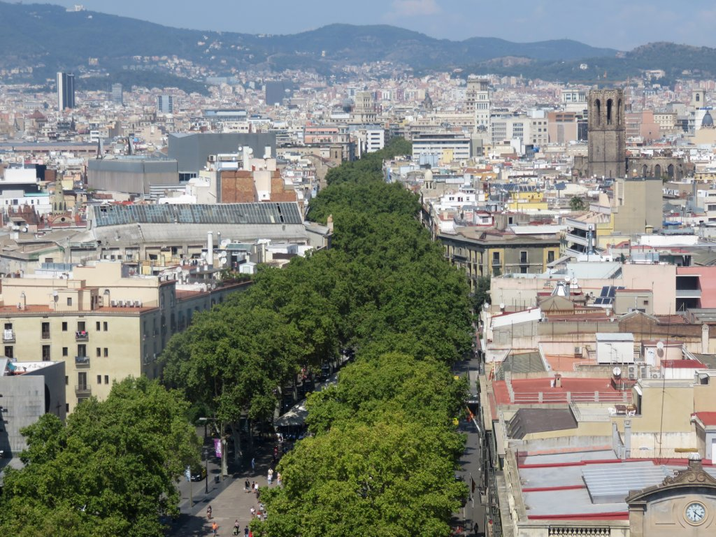 view Las Ramblas from the top of the Colombus tower